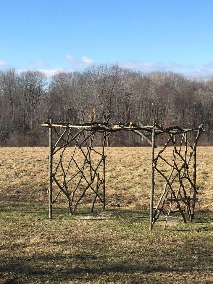 Arbor Builders Dutchess County NY